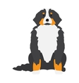 Flat dog pet and sitting cute vector image vector image