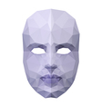 Polygonal face mask vector image vector image