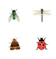set of bug realistic symbols with wasp ladybug vector image