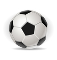 Soccer ball isolated on withe vector image vector image