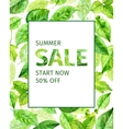 summer leaves spring sale vector image