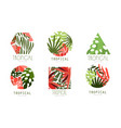 tropical logo design collection badges various vector image vector image