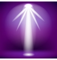 White Spotlight Isolated vector image vector image