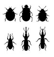 agricultural insect pests vector image