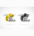 bee design on white background insect animals vector image vector image