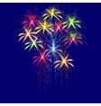 Colorful fireworks in honor of Victory Day on a vector image vector image