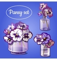 Flowers of pansy in a clear vase vector image vector image