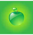 Glossy green apple vector image