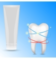 human tooth vector image