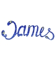 James name lettering tinsels vector image vector image
