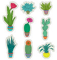 set hand drawn houseplant vector image