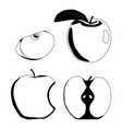 whole ripe fruit colors apple vector image