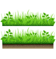 Grass Border Isolated On White Background vector image