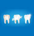 collection of dirty clean and strong white tooth vector image vector image