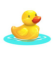 cute cartoon yellow rubber duck vector image