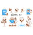 eco cotton label design flower set 100 bio vector image