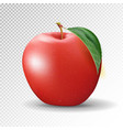 red apple on transparent background 3d vector image
