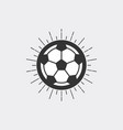 soccer ball with sunburst vector image