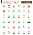 flat icons set of house plants and flowers vector image