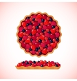 Berry pie icon on white background vector image