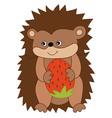 Cartoon Hedgehog vector image vector image