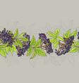 elderberry seamless pattern vector image vector image