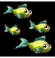 Green-yellow tropical fish four cartoon vector image vector image