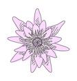 Sketch of flower lotus vector image