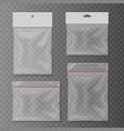 transparent plastic pocket bags set vector image vector image