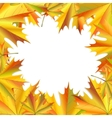 Frame of maple leaves vector image