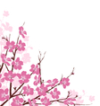 Branches with Pink Flowers Isolated on White vector image vector image