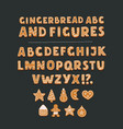 cookie font with chocolate chips full alphabet vector image vector image