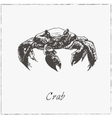 Crab Hand drawn sketch Collection of seafood vector image vector image