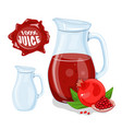 glass jug with natural juice ripe pomegranate vector image