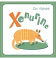 Letter X - Xenurine vector image