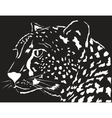 portrait of a leopard vector image