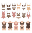 set of beautiful fashion lingerie elements vector image vector image