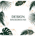 tropical background with free space for text vector image