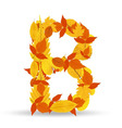 autumn leaves font letter B vector image