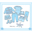 baboy clothes vector image