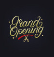grand opening hand written lettering vector image vector image