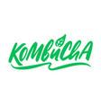 kombucha hand written logo vector image