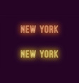 neon name of new york city in usa text vector image