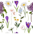 crocuses with herbs and many kind spring flower vector image vector image