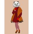Fashion cat portrait vector image