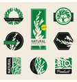 Nature-themed labels vector image