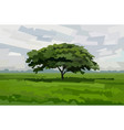 one tree in field vector image