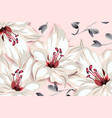 botanical template design pink lily flowers and vector image vector image