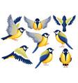 colorful icon set titmouse bird flat cartoon vector image vector image