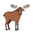 moose extant species antler elk animal wild image vector image vector image